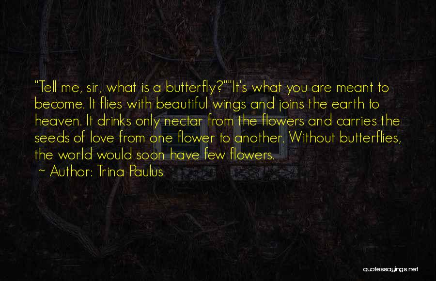 Flowers And Butterflies Quotes By Trina Paulus