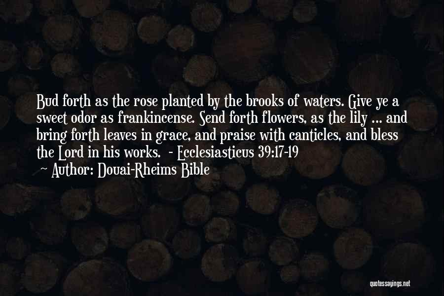 Flowers In The Bible Quotes By Douai-Rheims Bible
