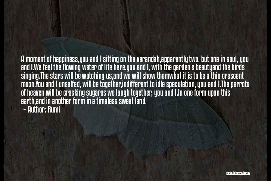 Flowing With Life Quotes By Rumi