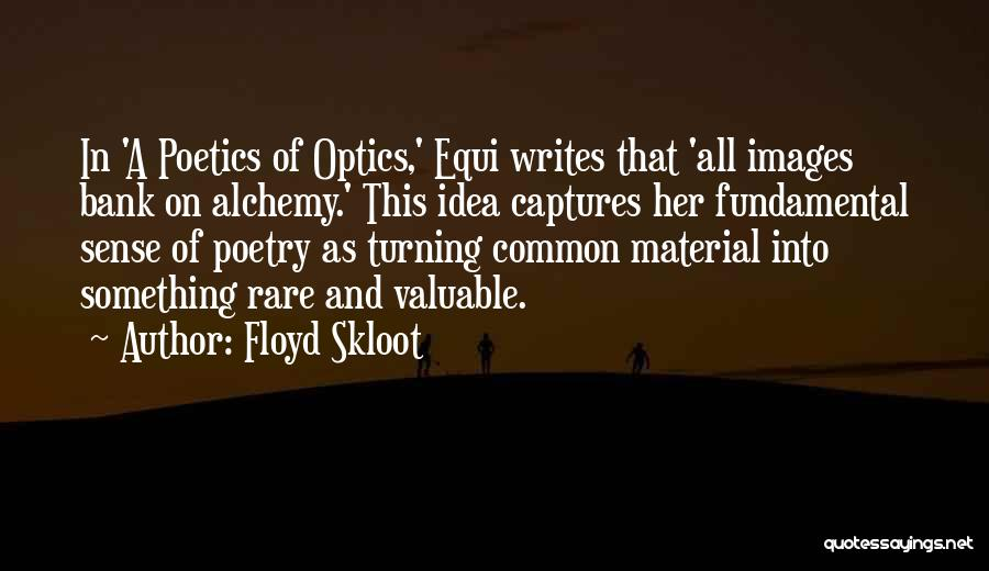 Floyd Skloot Quotes 1844241