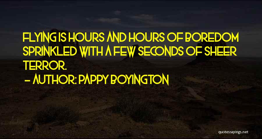 Flying Airplane Quotes By Pappy Boyington
