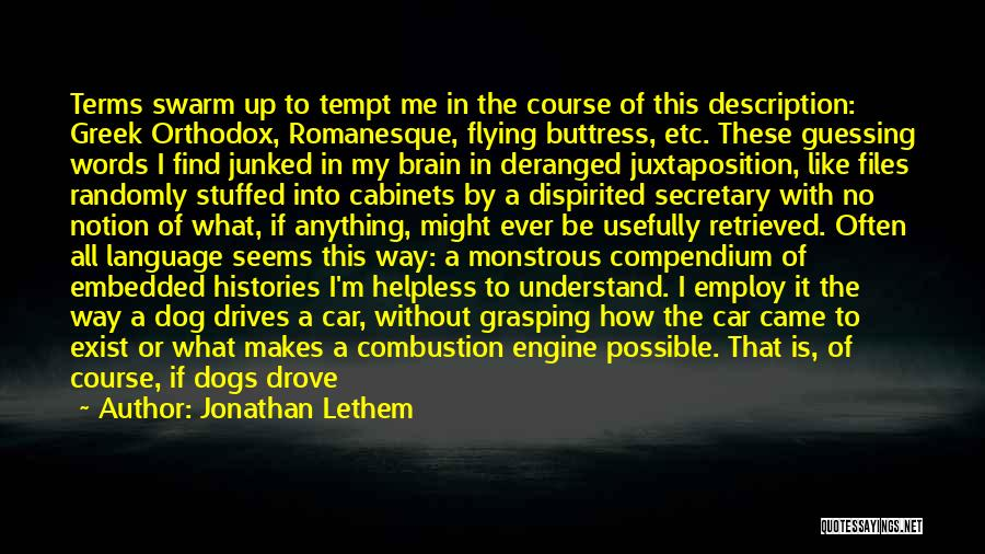 Flying Cars Quotes By Jonathan Lethem