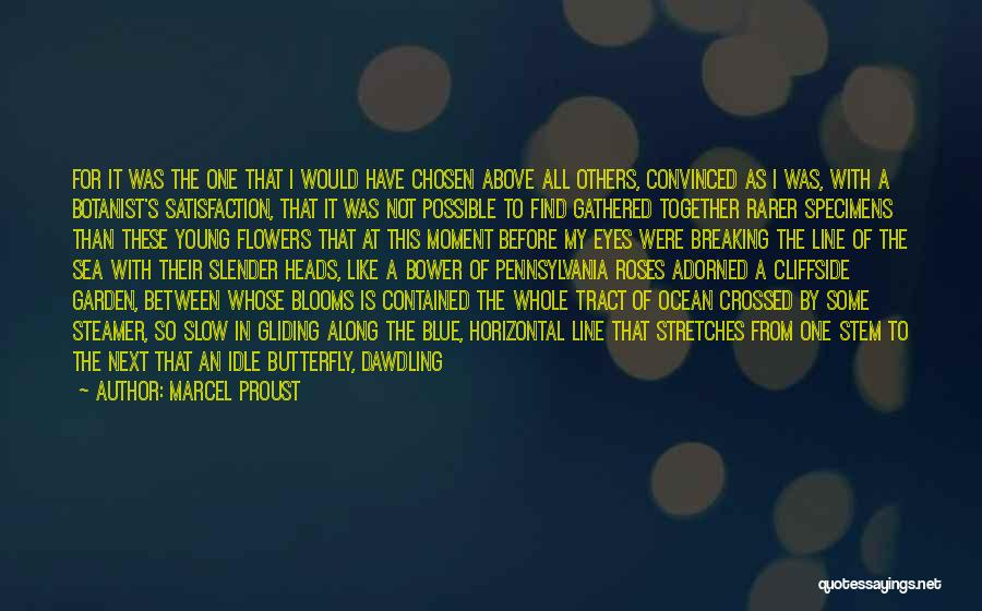 Flying Together Quotes By Marcel Proust