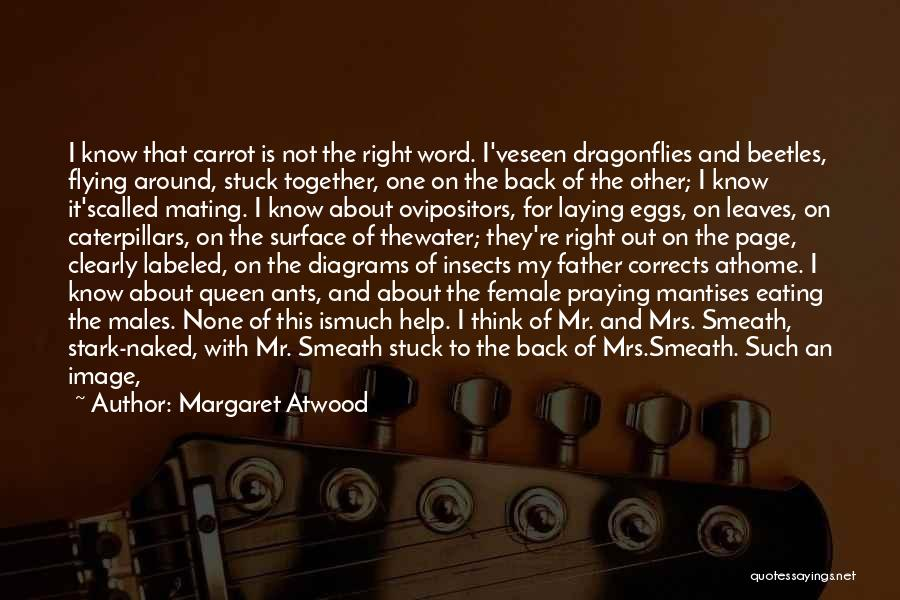 Flying Together Quotes By Margaret Atwood