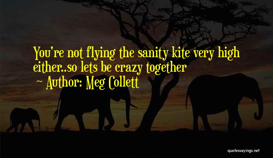 Flying Together Quotes By Meg Collett