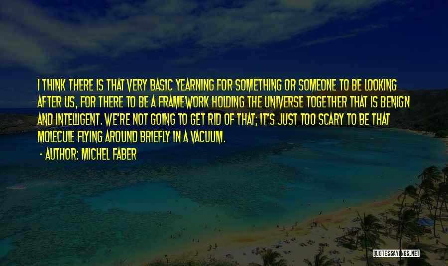 Flying Together Quotes By Michel Faber