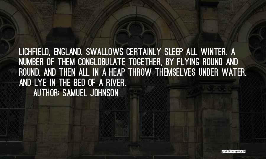 Flying Together Quotes By Samuel Johnson