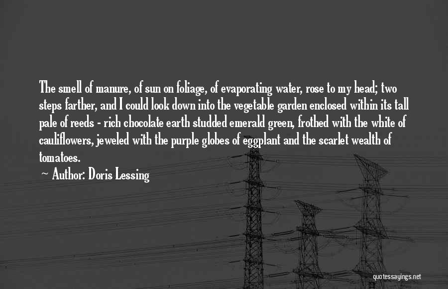 Foliage Quotes By Doris Lessing