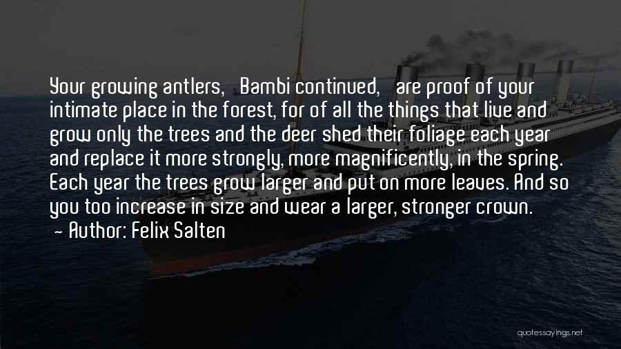 Foliage Quotes By Felix Salten