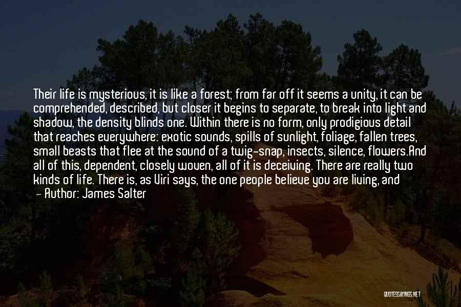 Foliage Quotes By James Salter