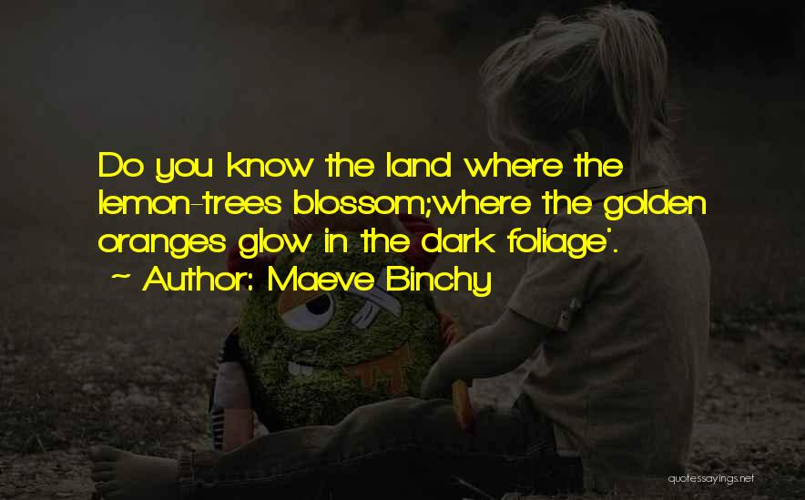Foliage Quotes By Maeve Binchy