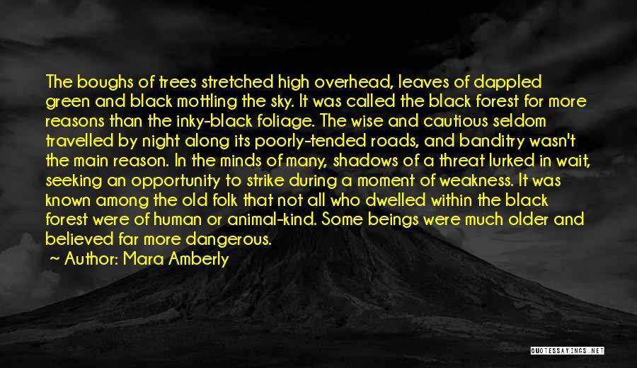 Foliage Quotes By Mara Amberly