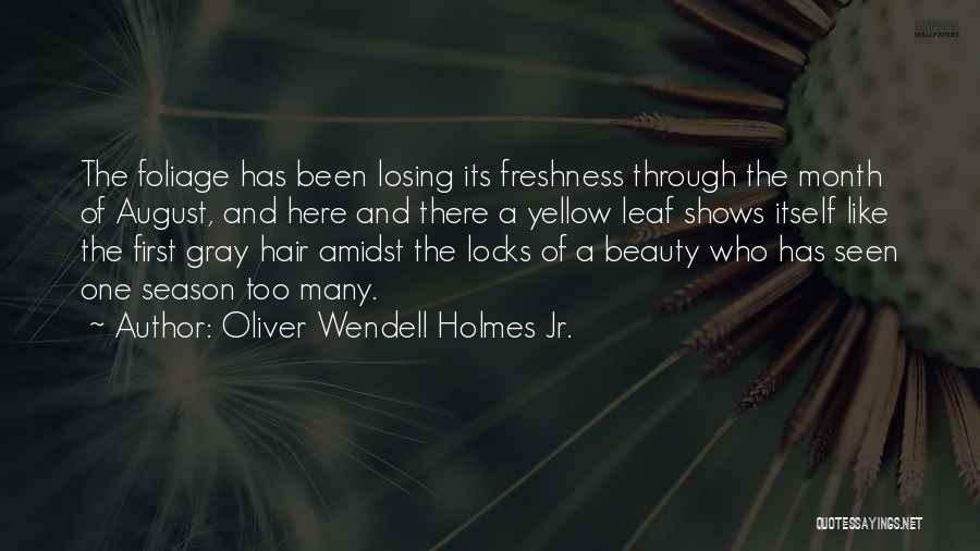 Foliage Quotes By Oliver Wendell Holmes Jr.