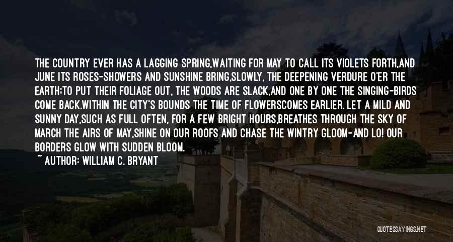 Foliage Quotes By William C. Bryant