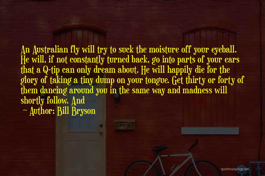 Follow The Dream Quotes By Bill Bryson