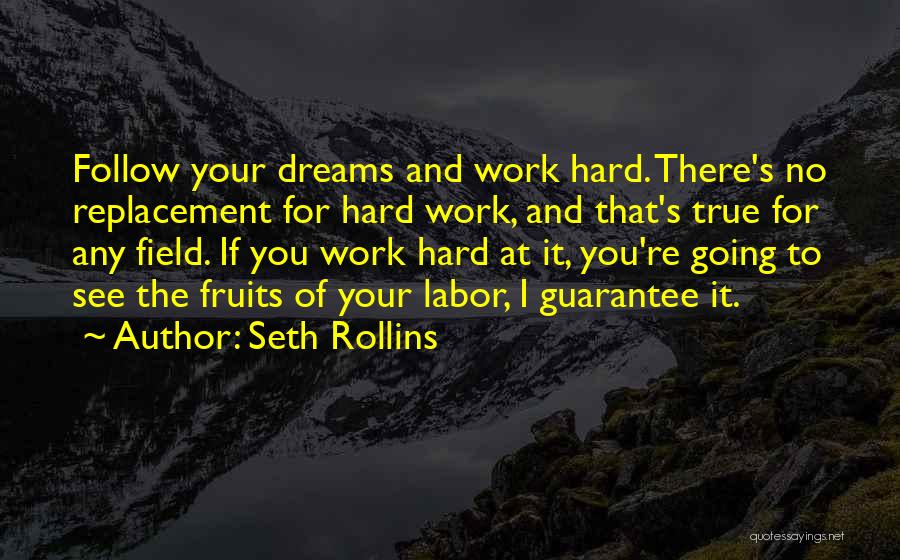 Follow The Dream Quotes By Seth Rollins