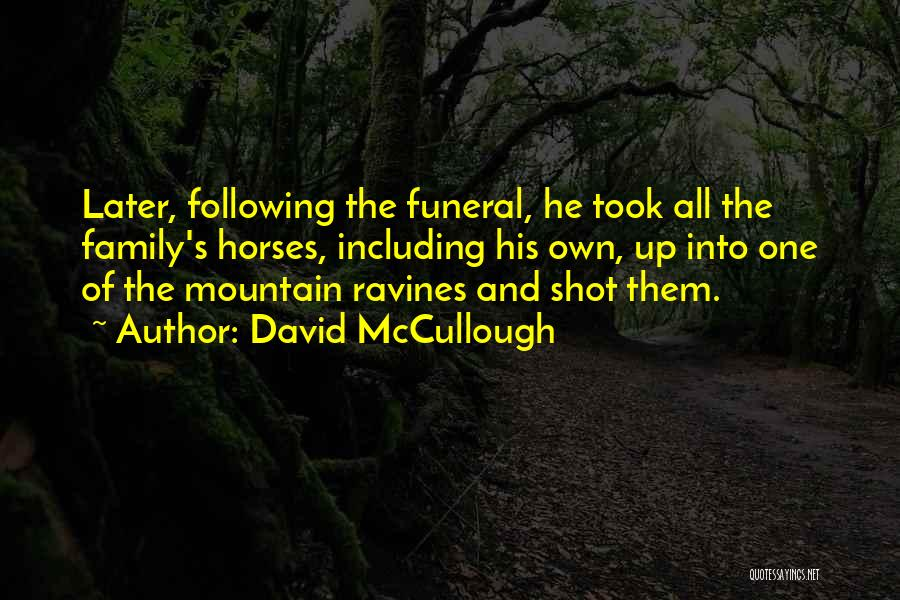 Following Up Quotes By David McCullough