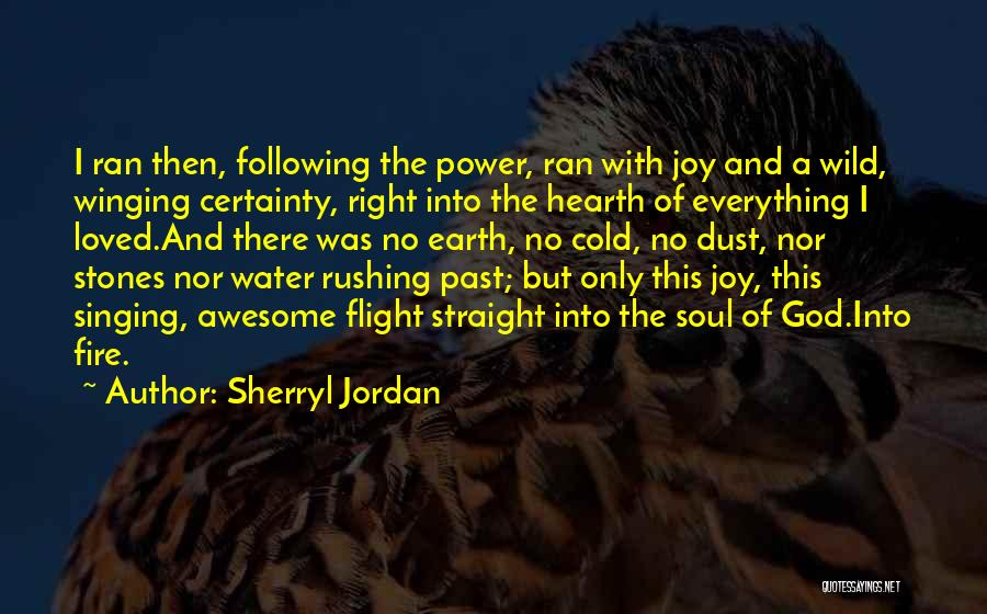 Following Your Joy Quotes By Sherryl Jordan