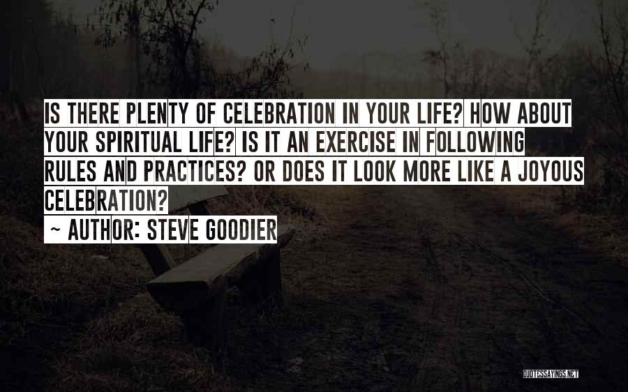 Following Your Joy Quotes By Steve Goodier