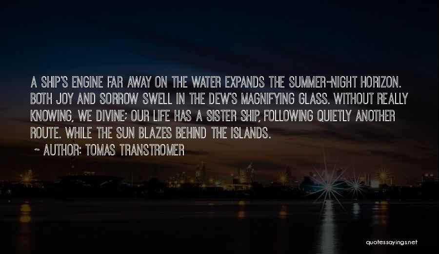 Following Your Joy Quotes By Tomas Transtromer