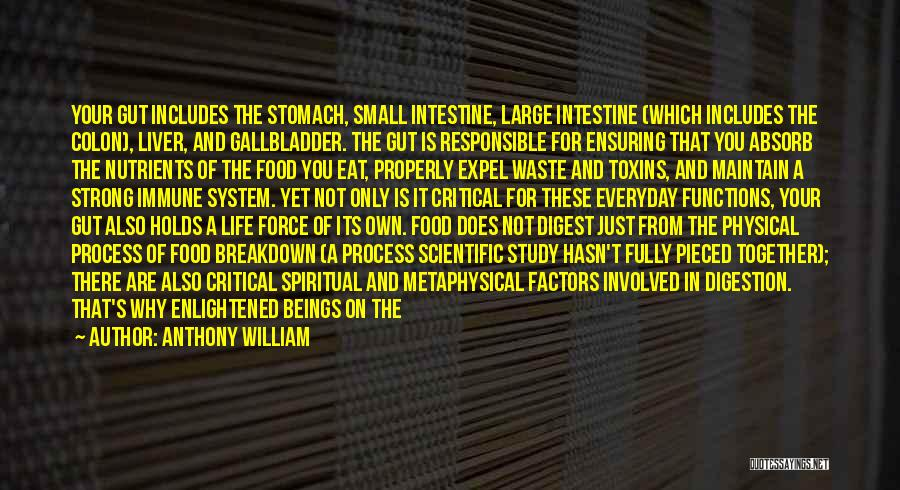 Food And Meals Quotes By Anthony William