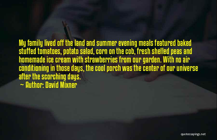 Food And Meals Quotes By David Mixner