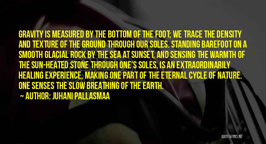 Foot Stone Quotes By Juhani Pallasmaa