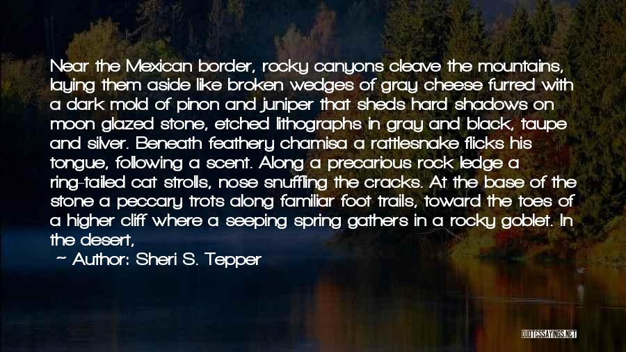 Foot Stone Quotes By Sheri S. Tepper