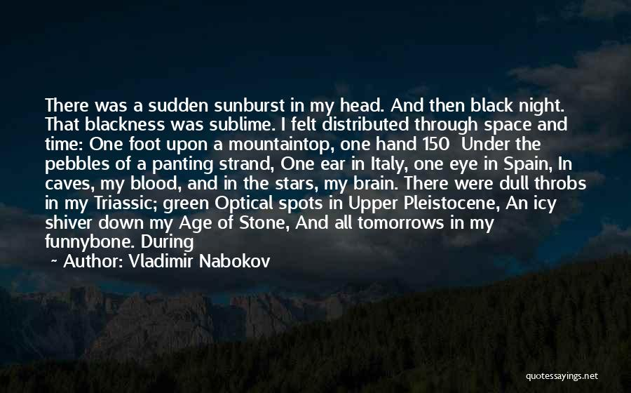 Foot Stone Quotes By Vladimir Nabokov