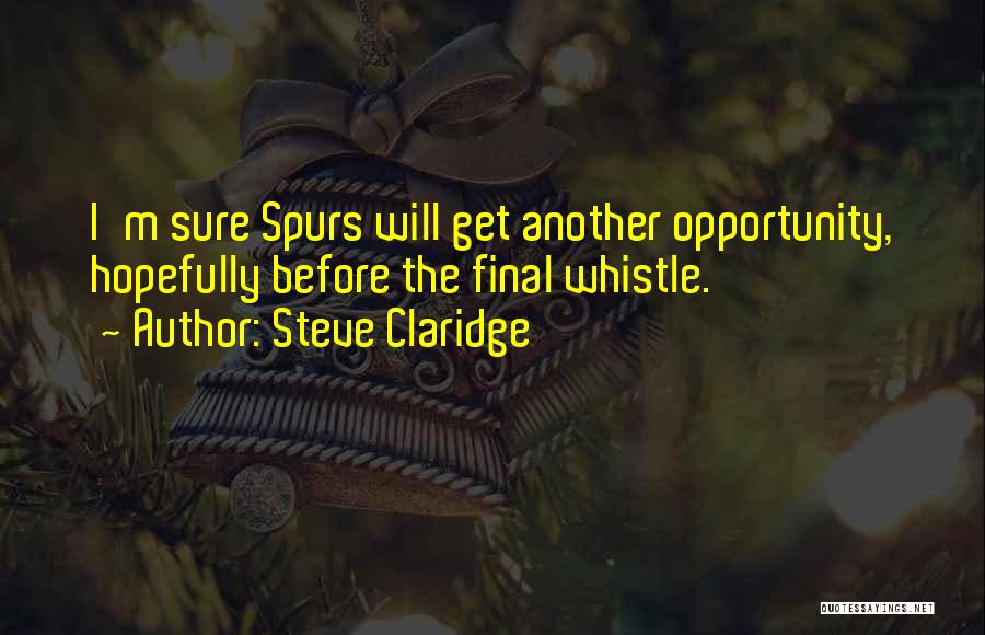 Football Final Quotes By Steve Claridge