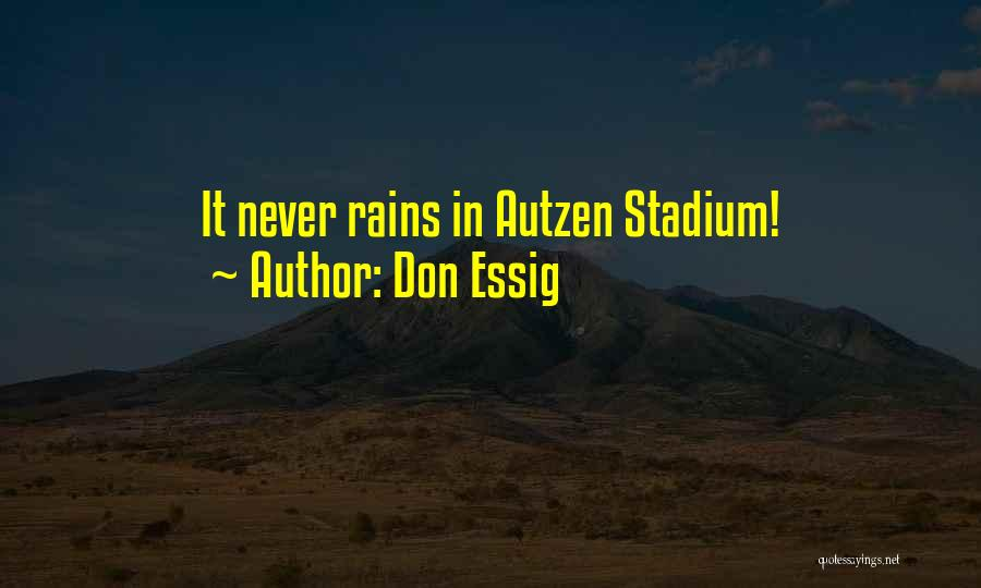 Football Stadium Quotes By Don Essig
