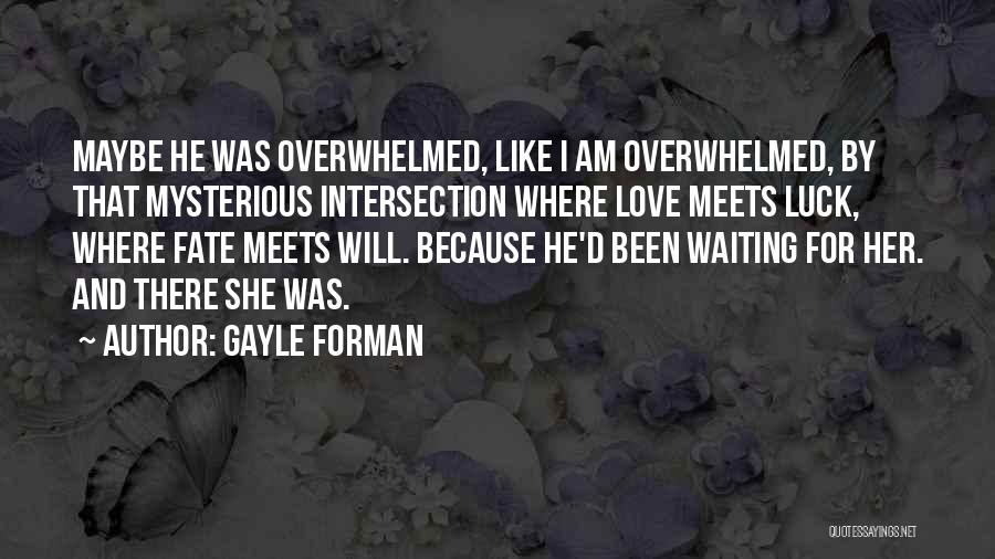 For Her Happiness Quotes By Gayle Forman