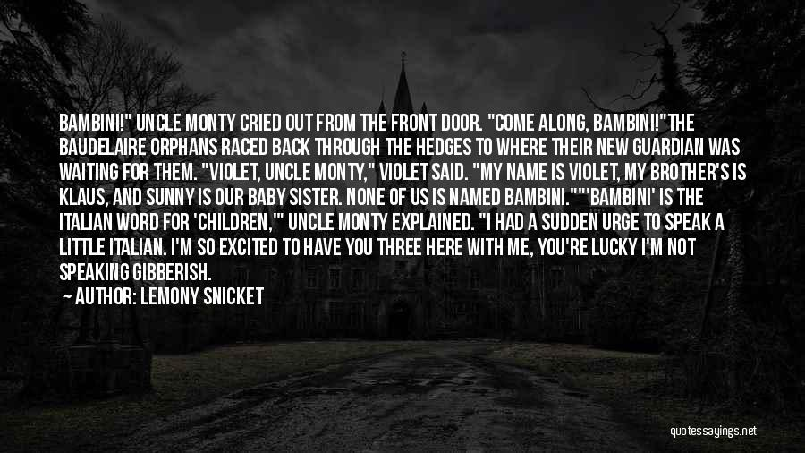 For My Sister Quotes By Lemony Snicket