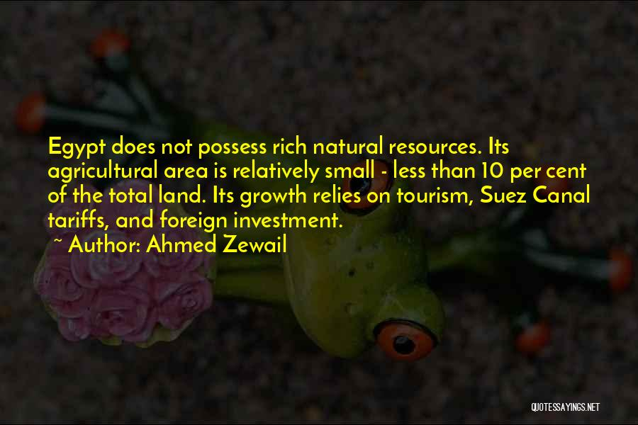 Foreign Investment Quotes By Ahmed Zewail