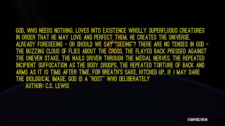 Foreseeing Quotes By C.S. Lewis