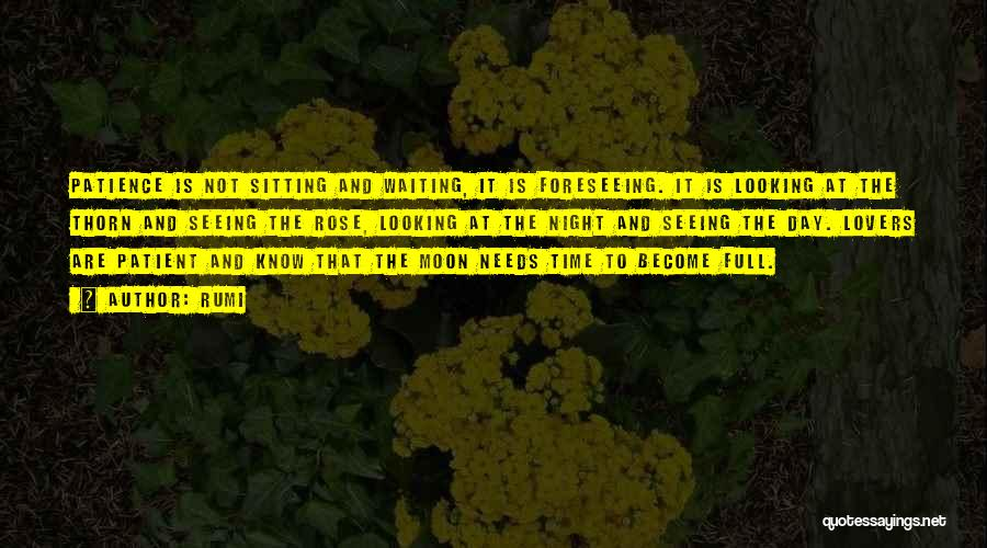 Foreseeing Quotes By Rumi