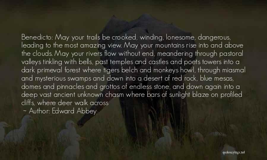 Forest Trails Quotes By Edward Abbey