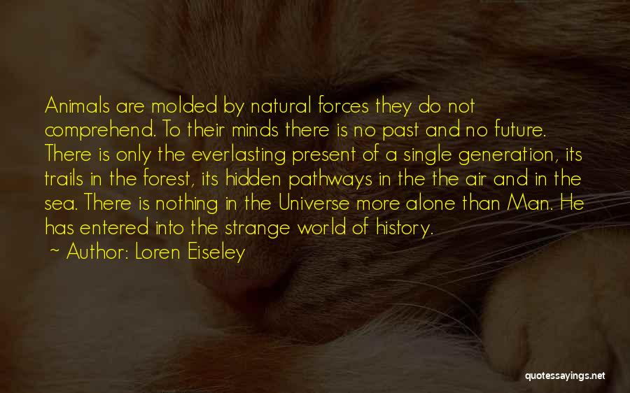 Forest Trails Quotes By Loren Eiseley