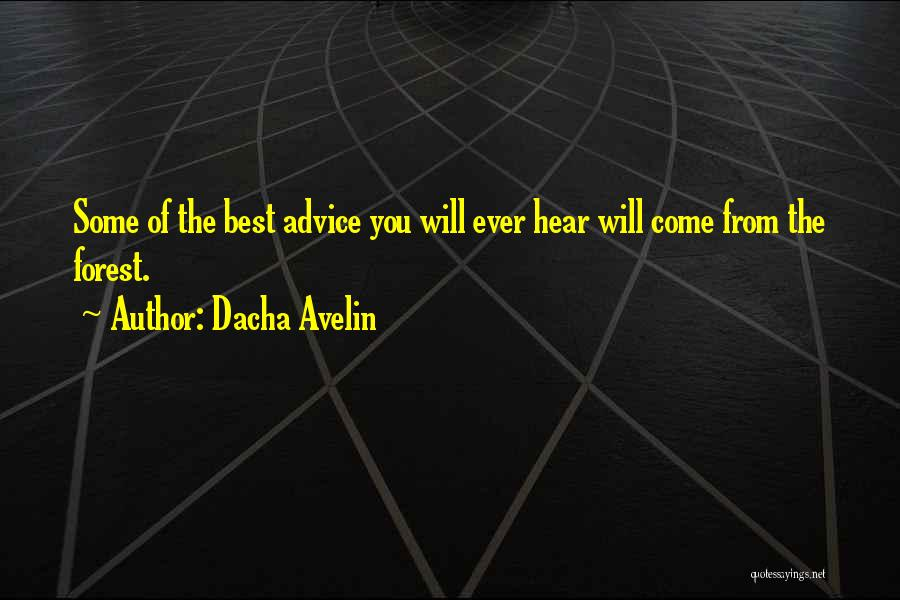 Forest Witchcraft Quotes By Dacha Avelin
