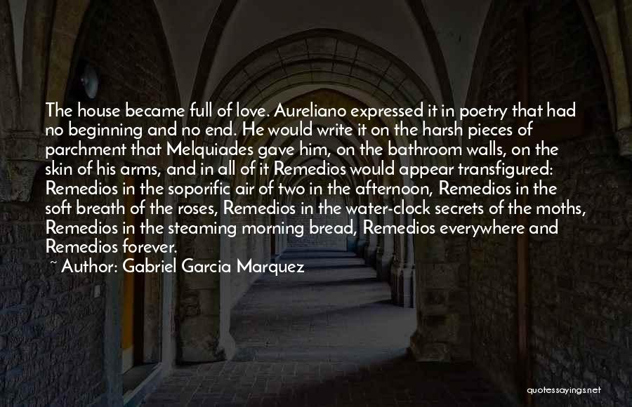 Forever In Your Arms Quotes By Gabriel Garcia Marquez
