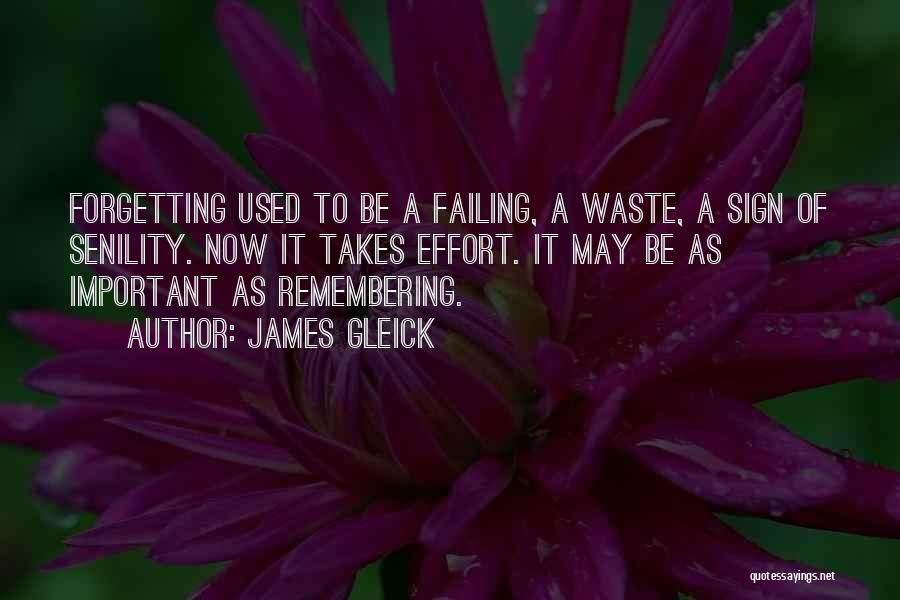 Forgetting Important Things Quotes By James Gleick