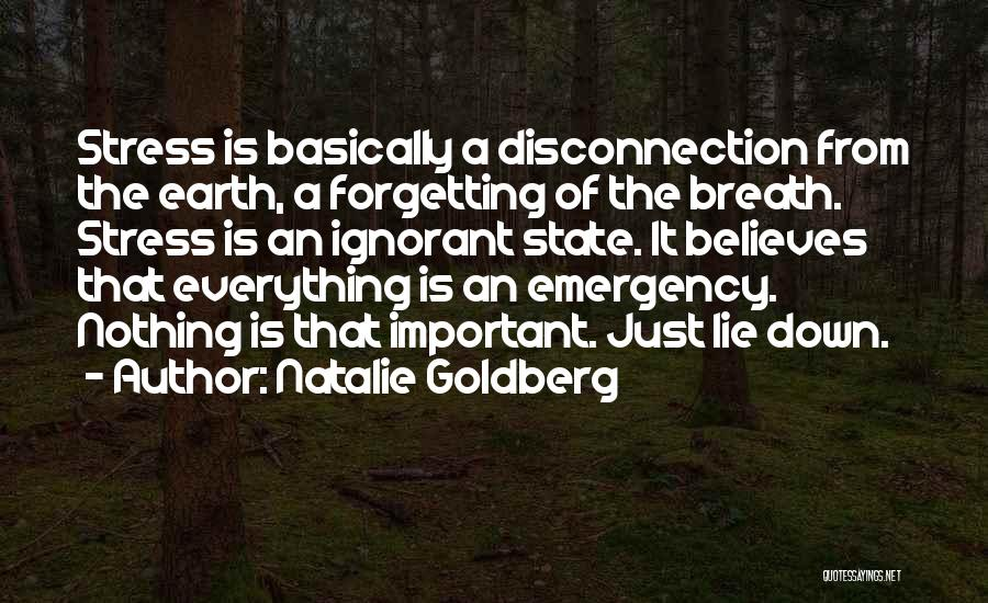 Forgetting Important Things Quotes By Natalie Goldberg