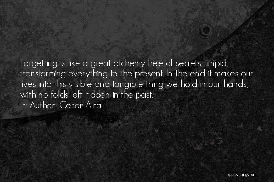 Forgetting Our Past Quotes By Cesar Aira