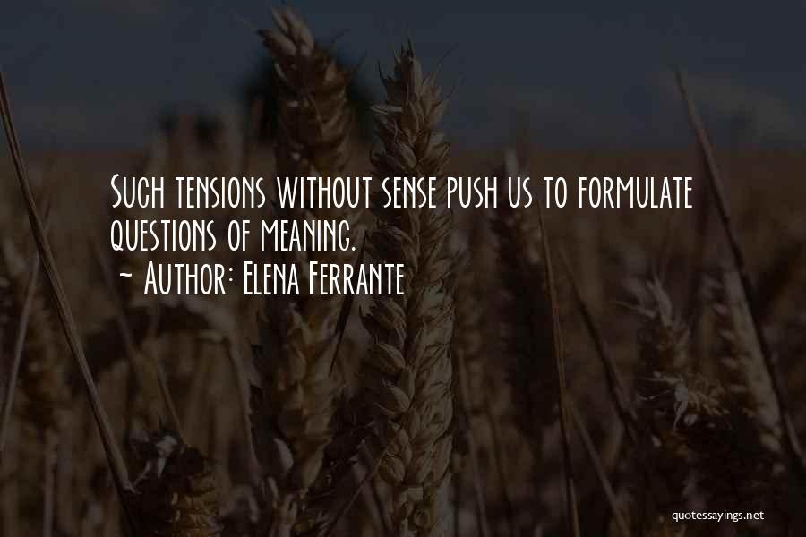 Formulate Quotes By Elena Ferrante