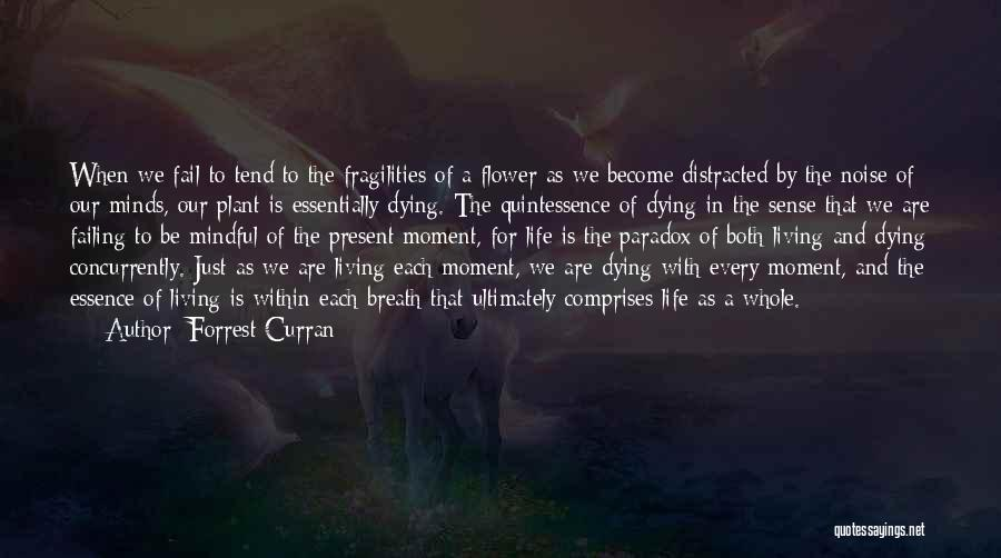 Forrest Curran Quotes 211420