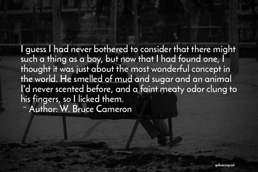 Found The One Quotes By W. Bruce Cameron