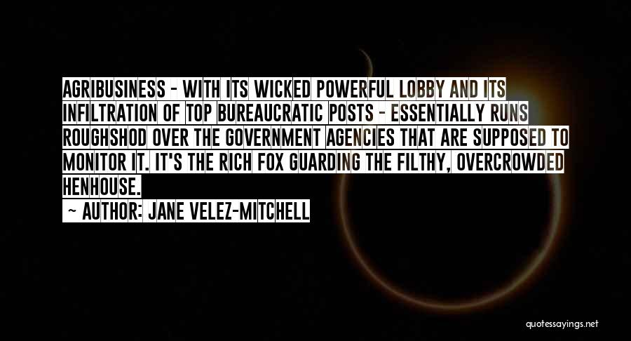 Fox Quotes By Jane Velez-Mitchell
