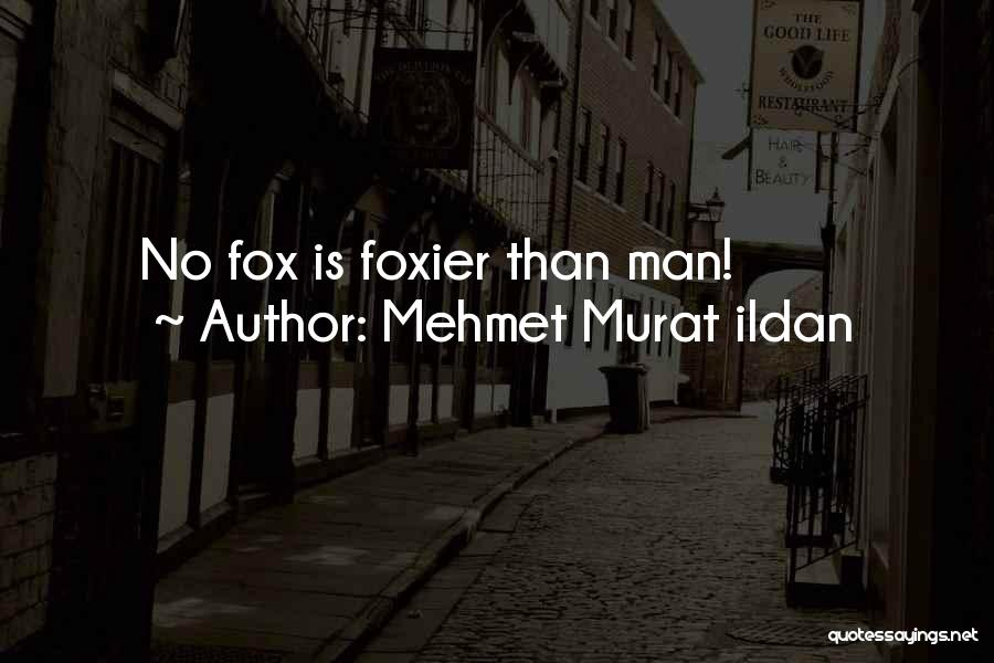Fox Quotes By Mehmet Murat Ildan