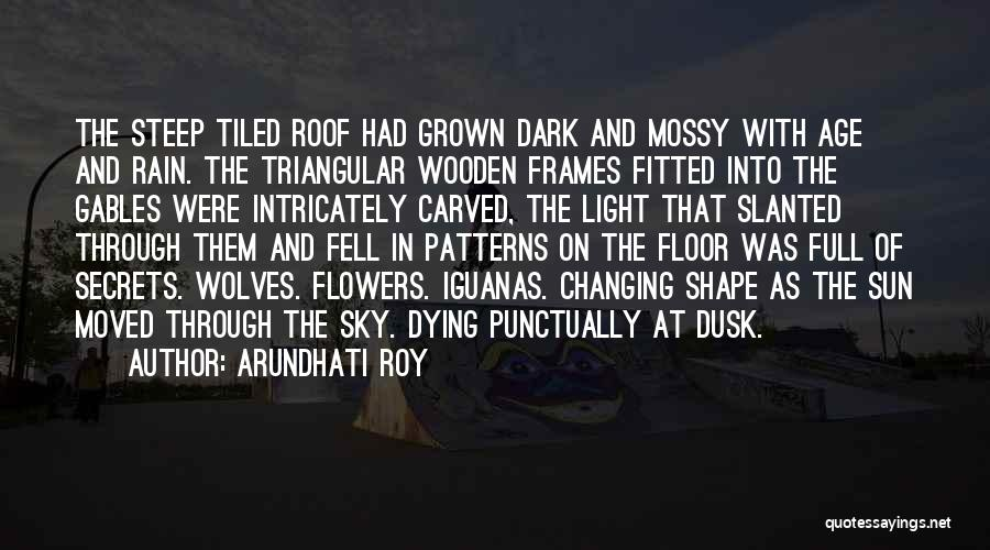 Frames Quotes By Arundhati Roy