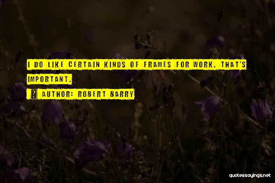 Frames Quotes By Robert Barry